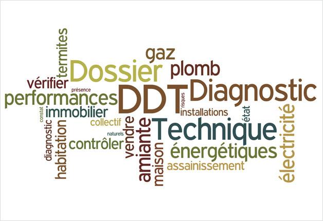 dossier de diagnostic technique exemple